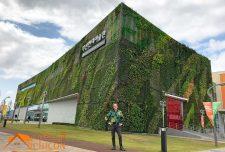 نمای سبز در معماری ساختمان ها